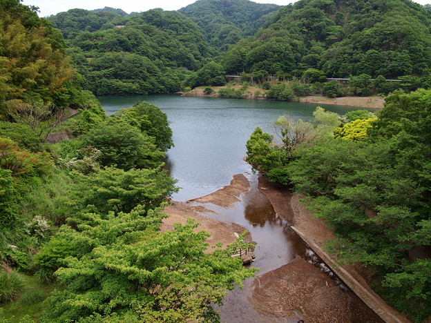 初夏の松川湖
