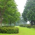 雨降る山中城址
