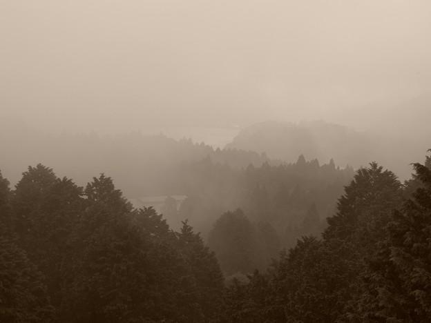 霧の芦ノ湖~箱根神社方面