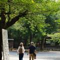 Photos: 真夏の参拝者
