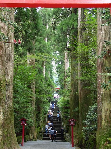 箱根神社は参拝者の列…