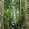 Photos: 箱根神社は参拝者の列…