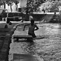 Photos: ジャブジャブ、清水を斬る