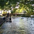Photos: 木陰の水辺