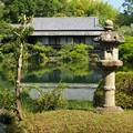 Photos: 小浜池は満水御礼 2020-b