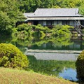 Photos: 小浜池は満水御礼 2020-c