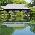 Photos: 小浜池は満水御礼 2020-d