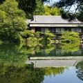 Photos: 小浜池は満水御礼 2020-e