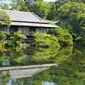 Photos: 小浜池は満水御礼 2020-f