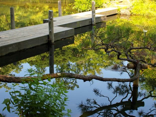 小浜池は満水御礼 2020-g