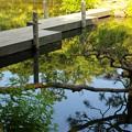 Photos: 小浜池は満水御礼 2020-g