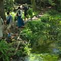 Photos: みんなで歩こう水辺の小径