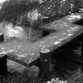 Photos: 湧水流れる水辺の石橋