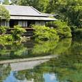 Photos: 水面の楽寿館