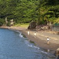 Photos: 浜をかける少女