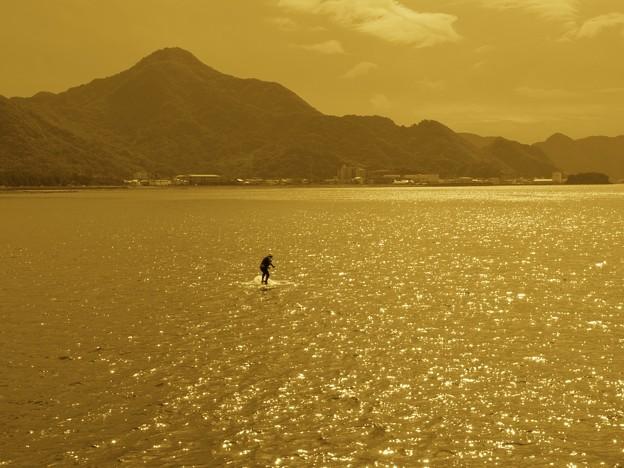 Photos: 秋の海原