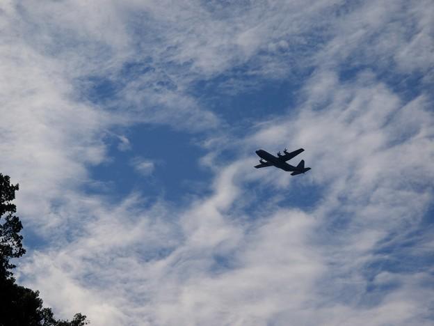 Photos: 低空を飛んできたのは…