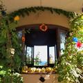 Photos: ガーデンのハロウィンな装飾