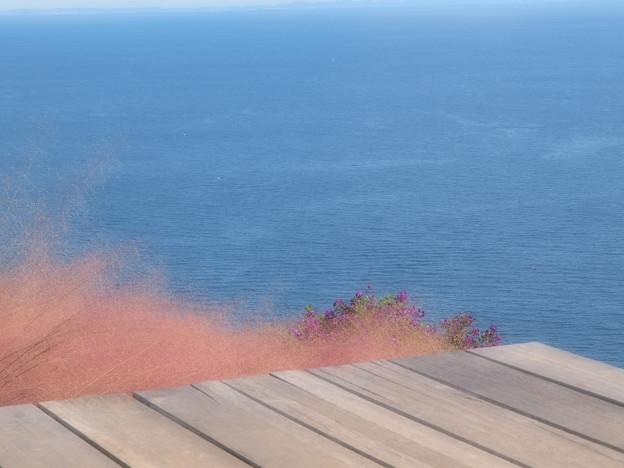 Photos: どこまでも碧い秋の海