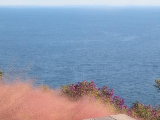 碧き秋の海原