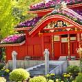 Photos: 花の首里城