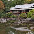 Photos: 晩秋の小浜池 (壱)