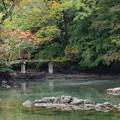 Photos: 晩秋の小浜池 (弐)