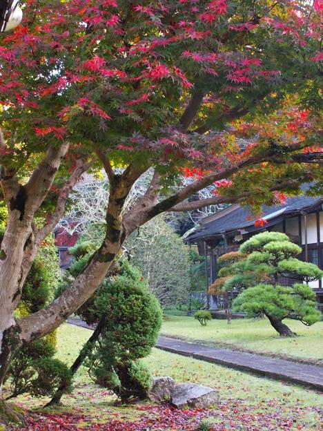 晩秋の山寺 (壱)
