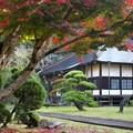 晩秋の山寺 (参)