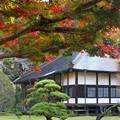 Photos: 山寺の晩秋