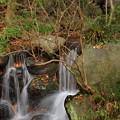 Photos: 五竜の滝の調べ