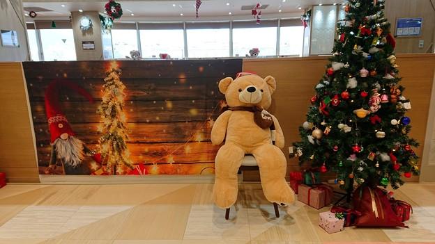 クマさんのクリスマス~♪