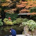 Photos: 晩秋の池を覗くと…