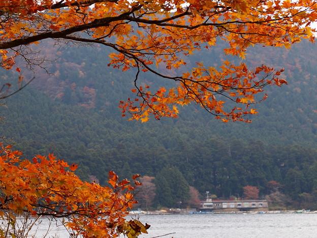湖畔の晩秋