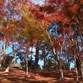 秋色に染まった匠の村