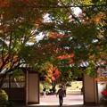 Photos: 秋色ゲート