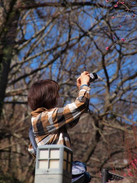 春を感じ春を撮る