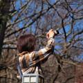 Photos: 春を感じ春を撮る
