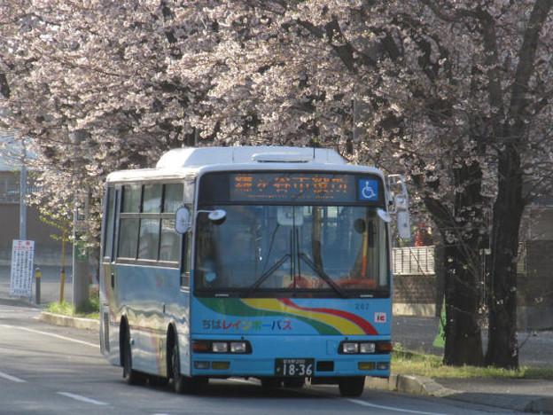 【ちばレインボーバス】 202号車