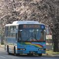 写真: 【ちばレインボーバス】 202号車