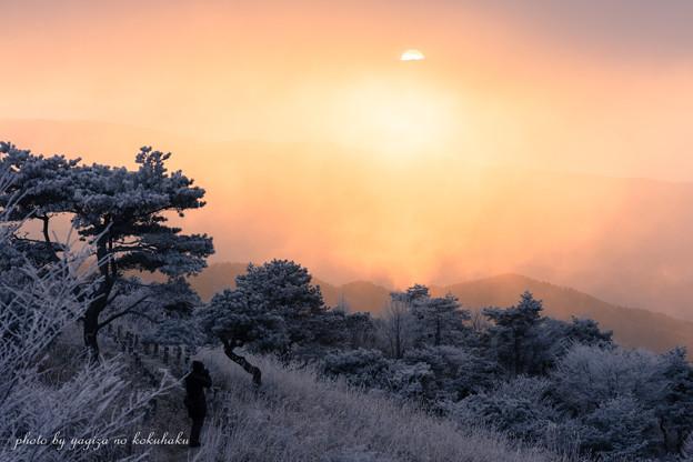 Photos: 風景撮りの告白。#32