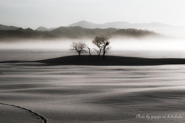 Photos: 風景撮りの告白。#33