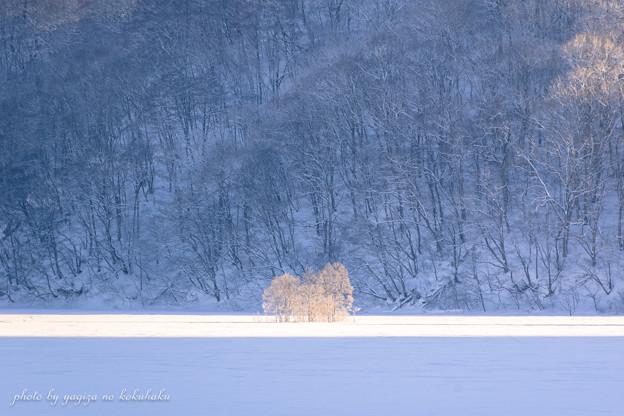 写真: 風景撮りの告白。#46