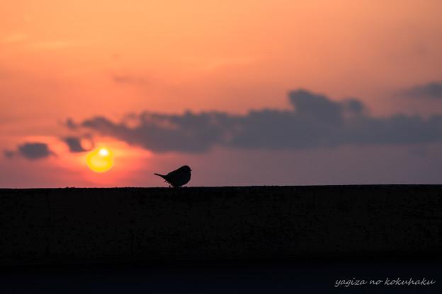 写真: 風景撮りの気持ち。