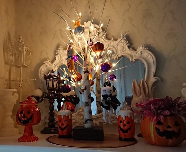 ハロウィン飾り付け ニトリ 白樺ツリー