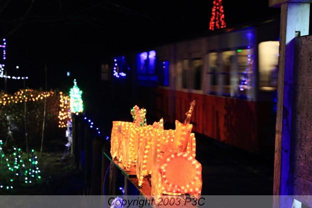 SLとイルミ列車