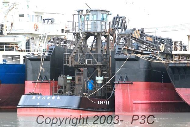 カンガル-船?