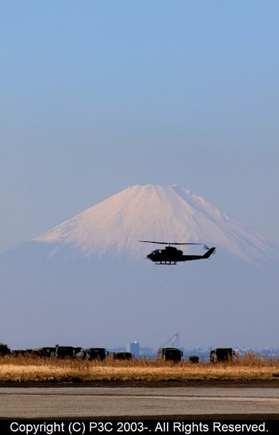 富士山とコブラ