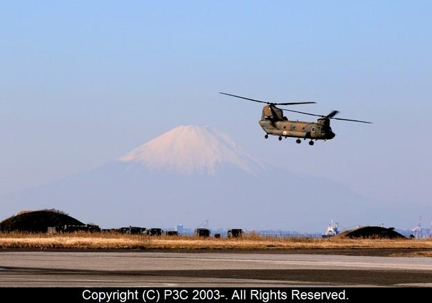 富士山とチヌ-ク