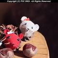 Photos: 今年はネズミ